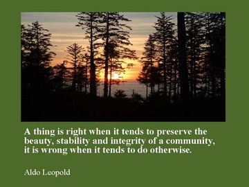 VI forum - aldo leopold quote