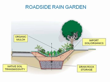 View royal showcasing - rain garden graphic