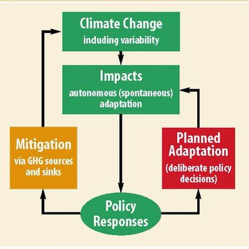 Climate change - mitigation and adaptation