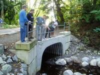 Musqueam creek at crown street (200pixels)