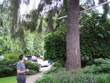 UBC gi tour - ubc tree canopy research project (june 2007)