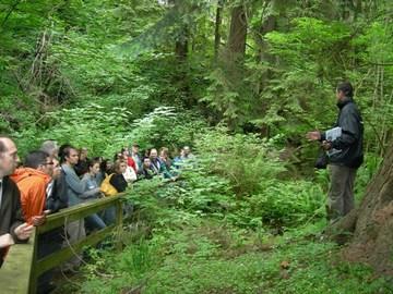UBC gi tour - mosquito creek wetland (june 2007)