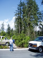 Maplewood eco-industrial business park - preservation of forest strips