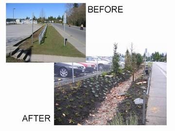 Delta - before& after photos for rain garden at cougar canyon school