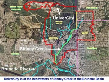 UniverCity - brunette & stoney context