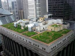 Green roof storyu