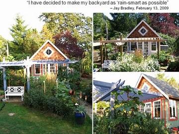 Jay bradley - rain garden collage_v2