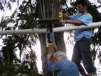 Urban forest research project - markus weiler & hans schreier doing installation (200p)